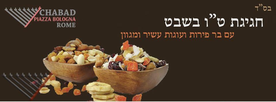 Seder Tu BiShevat with Chabad